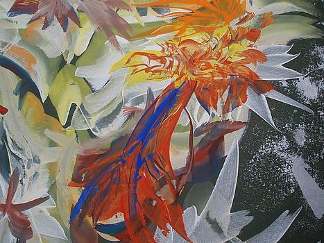 Flame tree by Vlado  Katkic