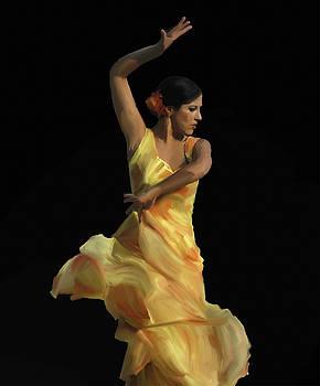Flamenco by Tony Pearse