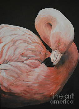 Flamingo by Charlotte Yealey