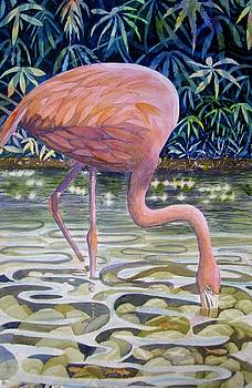 Flamingo Fishing by Martha Ayotte