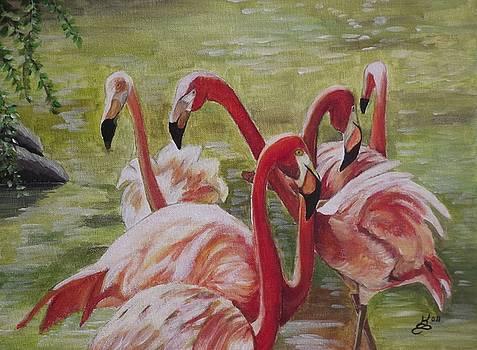 Flamingo Gathering by Kim Selig