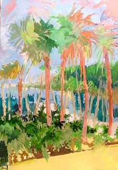Flamingo Palms by Trish Vevera