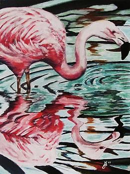 Flamingo Reflection by Kim Selig