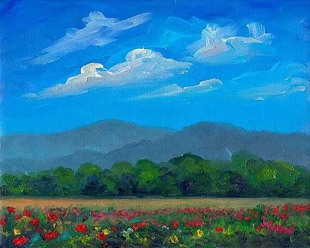 Fletcher Park Poppies by Jeff Pittman