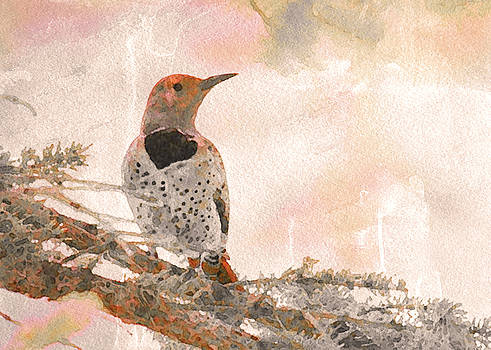 Flicker Awaits by Amy G Taylor
