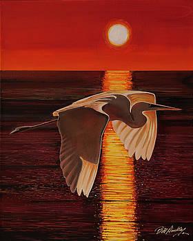 Flight in Orange Sunset by Bill Dunkley