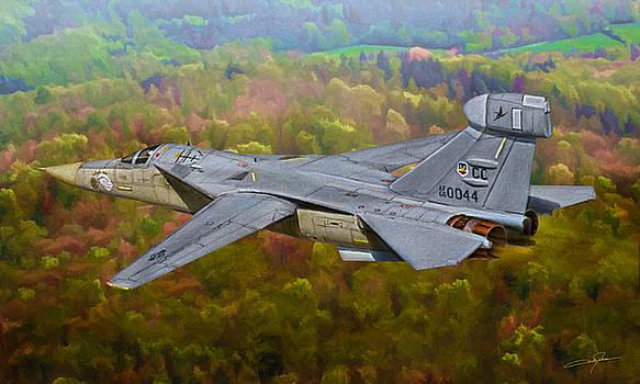 Dale Jackson - Flight of the Raven