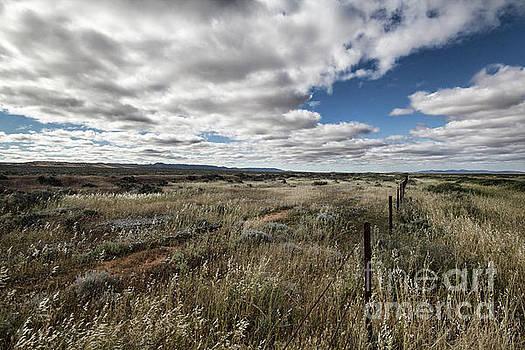 Flinders Ranges Fields V2 by Douglas Barnard