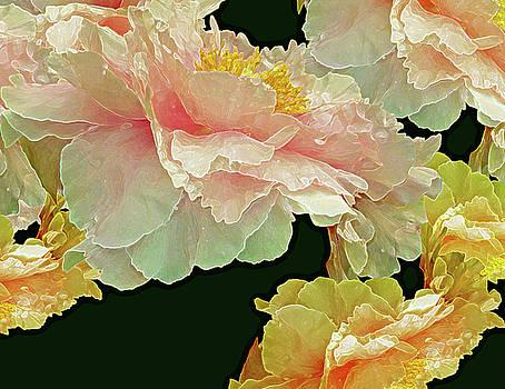 Floating Bouquet 31 by Lynda Lehmann
