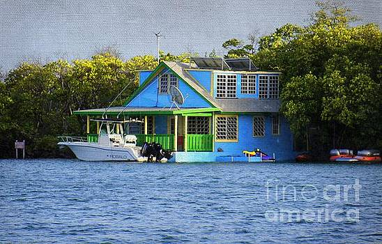 Floating House in La Parguera Puerto Rico II by Lilliana Mendez