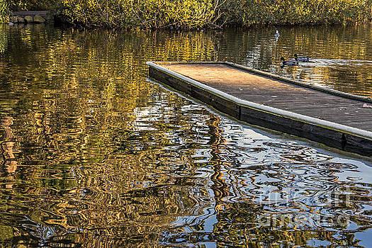 Floating by Kate Brown