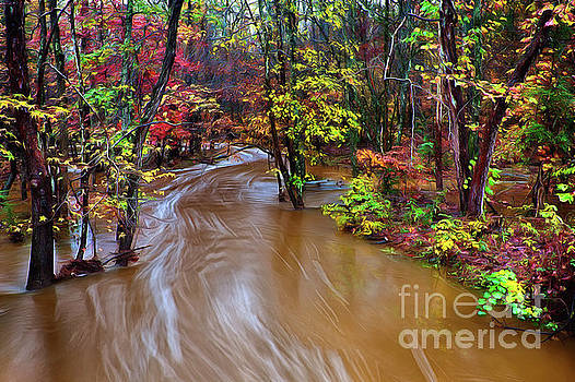 Dan Carmichael - Flooded Creek on a Rainy Autumn Day FX