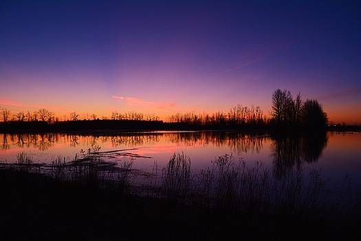 Flooded Field Sunset by Karl Anderson