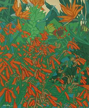Flora and fauna by Malcolm Warrilow