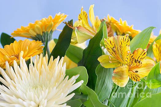 Steve Purnell - Floral Bouquet