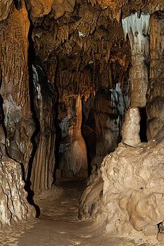 Florida Caverns Passage  by Debra Forand
