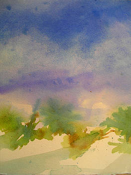 Florida Dunes by Lisa Fatone