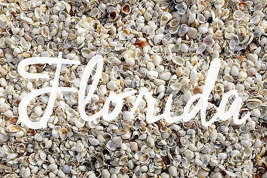 Edward Fielding - Florida Seashells
