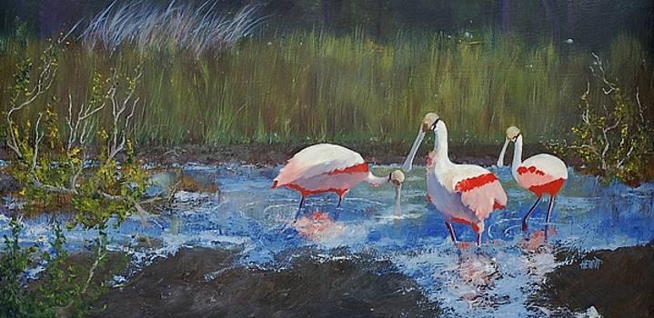 Florida Spoonbills by Philip Hewitt