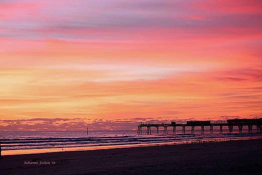 Florida Sunrise 1 10-25-16  by Julianne Felton