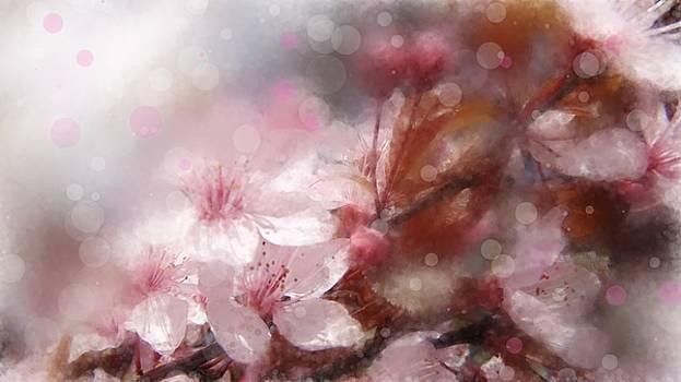 Flower by Alina Kurkierewicz