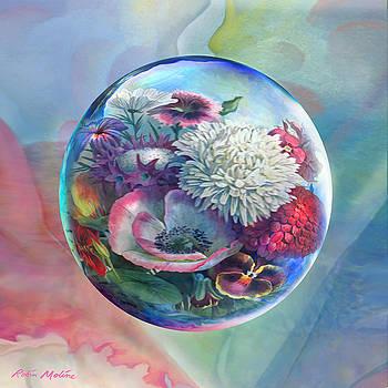 Robin Moline - Flower Drop Blues