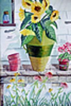 Flower Pots by D E Bartley