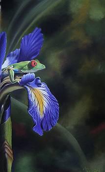 Flower Prince by Pravin  Sen
