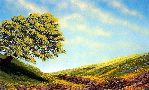 Frank Wilson - Flowered Fields