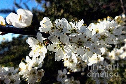 Flowering of White Flowers - Variation 1 by Jean Bernard Roussilhe