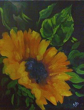 Flowers 2 by Akhilkrishna Jayanth