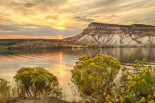 Flowers and Sunset at Kenney Reservoir by Lois Lake