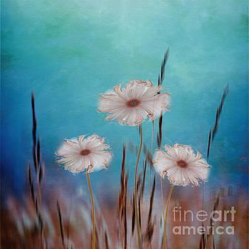 Flowers for Eternity 2 by Klara Acel