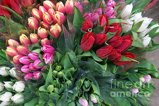 Flowers For Sale  by John S