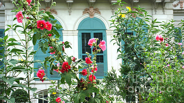 Flowers in front of the window by Eva-Maria Di Bella