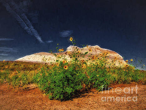 Flowers In The Desert  ... by Chuck Caramella