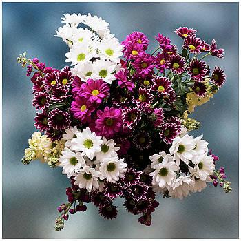 Flowers by John Fotheringham