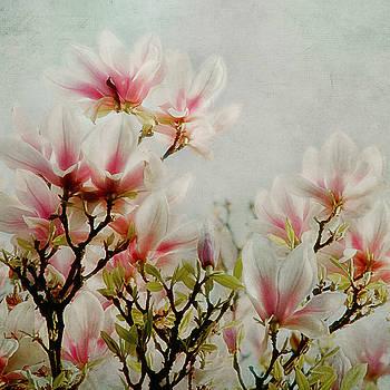 Flowers Of Spring by Claudia Moeckel