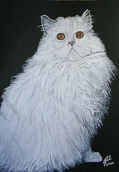 Fluffy Cat by Cybele Chaves