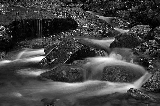 Juergen Roth - Flume Brook at Franconia Notch State Park Nature