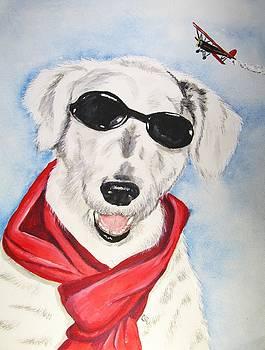Fly Boy by Carol Blackhurst