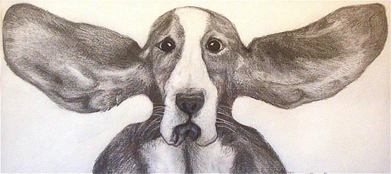 Fly Dog by Rebecca Robinson