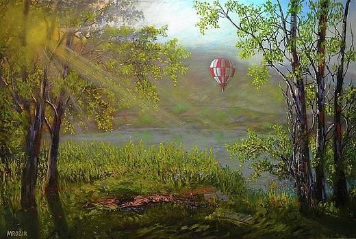 Flying Away by Michael Mrozik