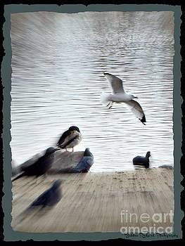 Flying Free  by Bobbee Rickard