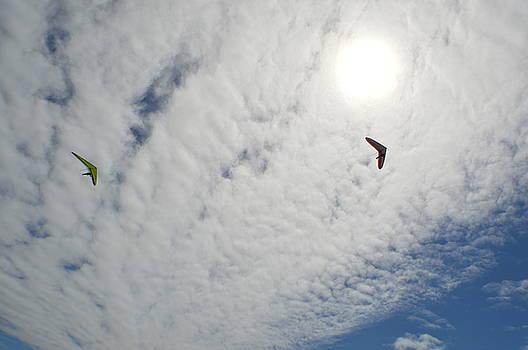 Flying High by Ekta Gupta