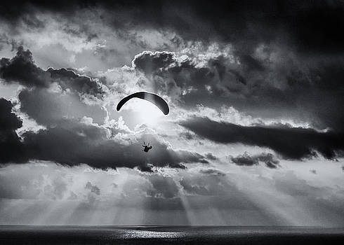Flying High by Marion McCristall