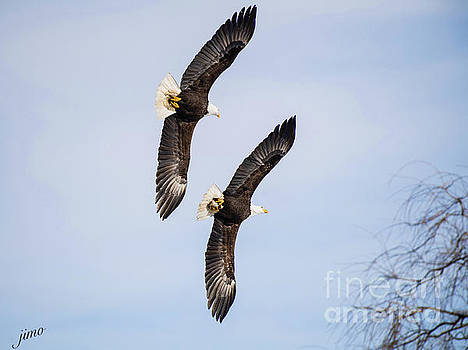 Flying in Formation by Jim  Hatch