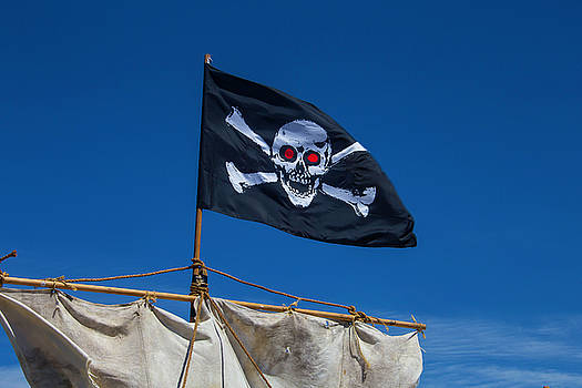 Flying The Black Flag by Garry Gay
