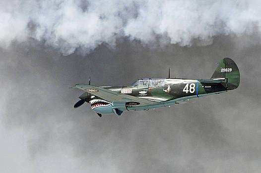 Flying Through Smoke by Shoal Hollingsworth