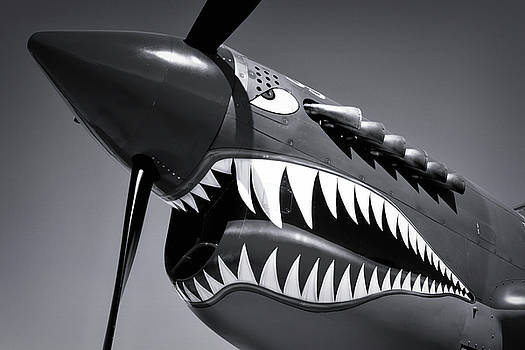 Flying Tiger Plane Black And White by Garry Gay